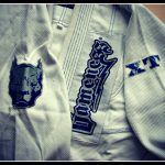 gameness xt bjj gi patches